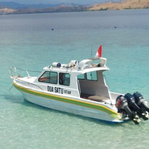 Speedboat rental labuan bajo, fastboat to komodo, labuan bajo yacht rental, komodo boat pricelist, speedboat charter 2019, how to get to komodo island.